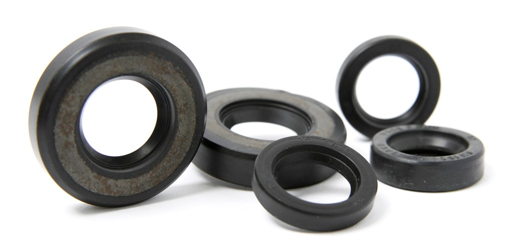 Franco Morini Oil Seal Kit