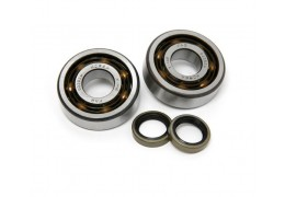 Motobecane AV7 AV10 Bearing Seal Set