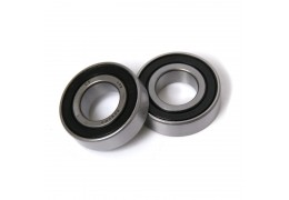Honda Hobbit PA50 Bearing Set