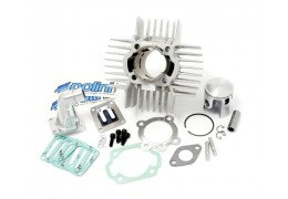 Puch 64cc Polini Reed Valve Kit