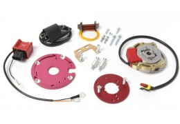 Honda Hobbit HPI Internal Rotor CDI Unit -With Lights