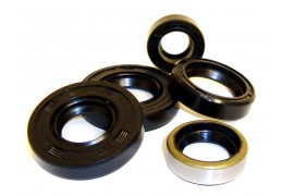 Tomos A35/A55 Moped Engine Seal Kit